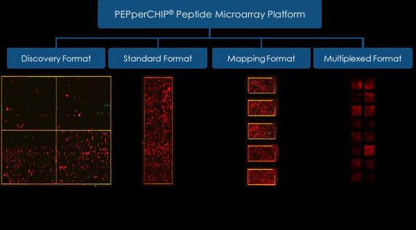 Microarray Plattform blau