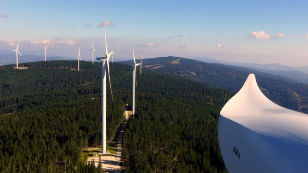 WindPark_Forest