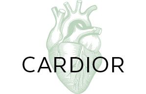 Logo Arzneimittel/Kardiovaskulär Startup Cardior - HTGF Start-up VC Finanzierung